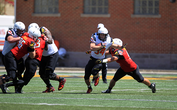 terps 11