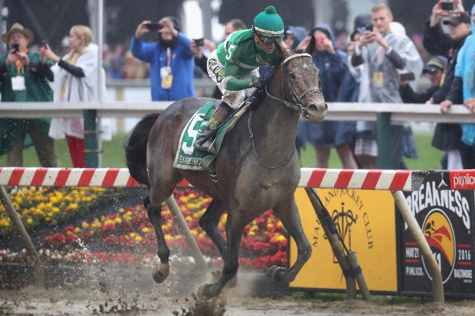 Exaggerator Upsets Nyquist In The 2016 Preakness